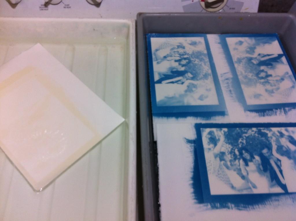 TSP bleached cyanotype